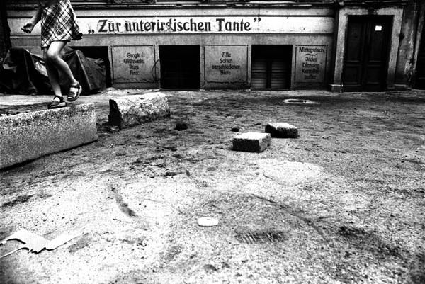 Berlin in Einer Hundenacht